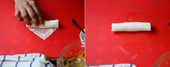 rolled spring roll