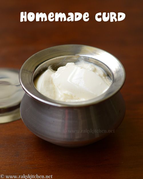 indian-style-curd