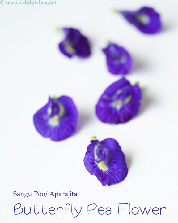 sangu-poo-aparajita